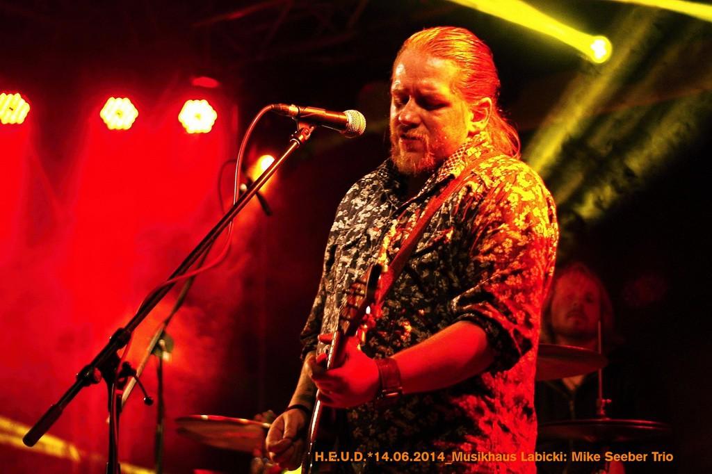 Mike-Seeber-Trio-2014_01