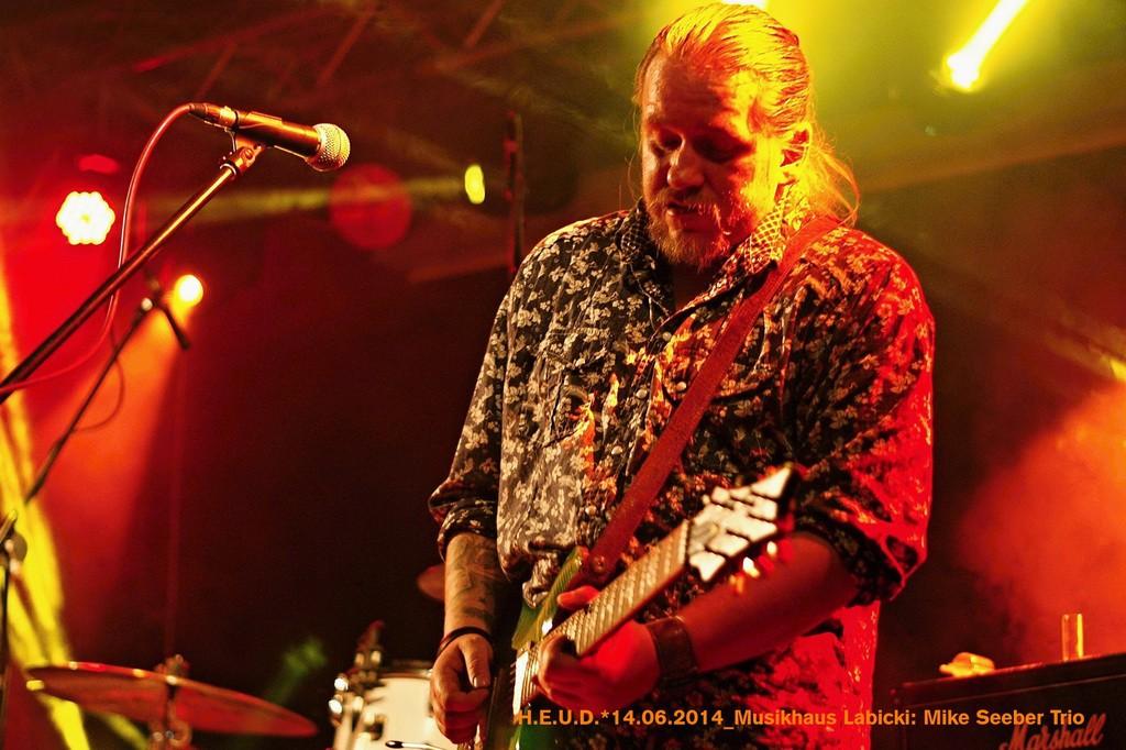 Mike-Seeber-Trio-2014_03