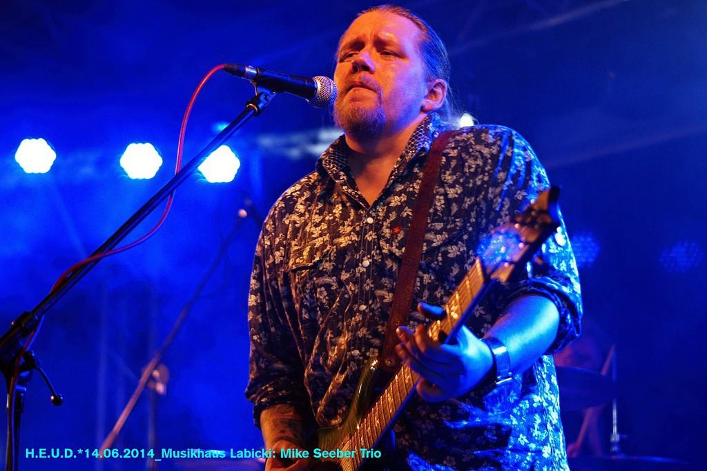 Mike-Seeber-Trio-2014_05