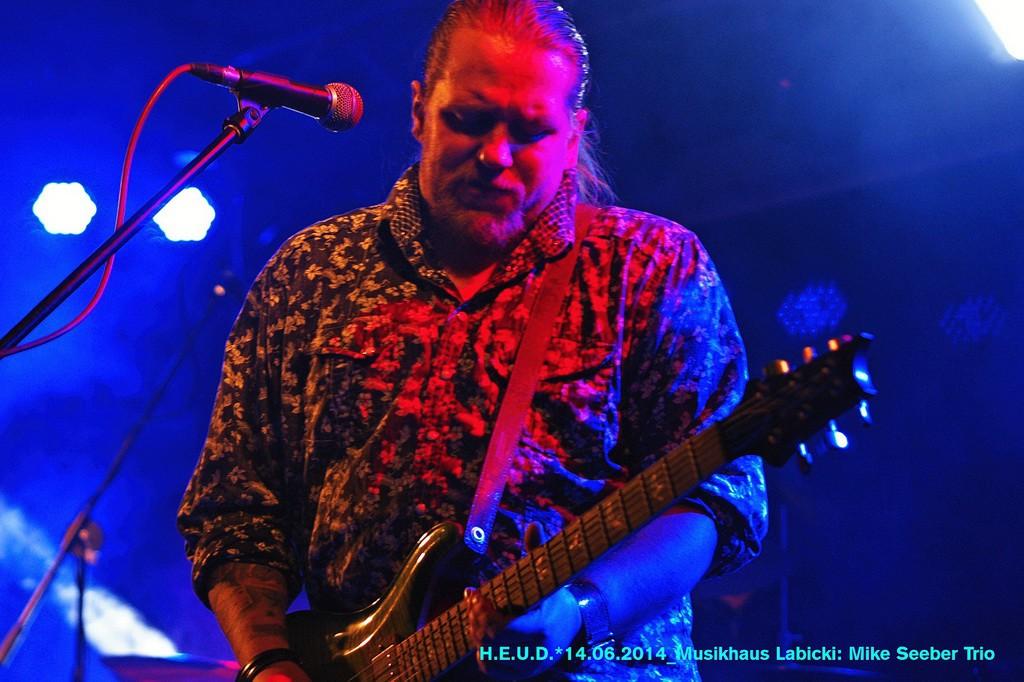 Mike-Seeber-Trio-2014_06