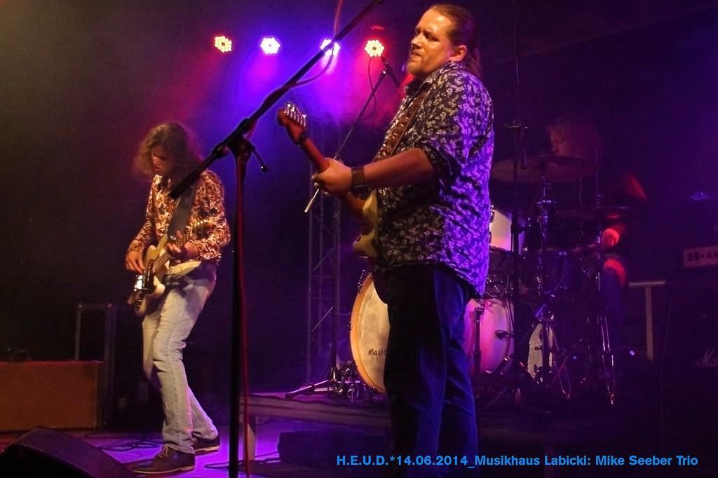 Mike-Seeber-Trio-2014_10
