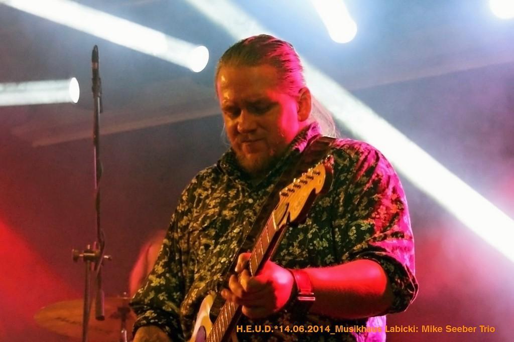 Mike-Seeber-Trio-2014_11