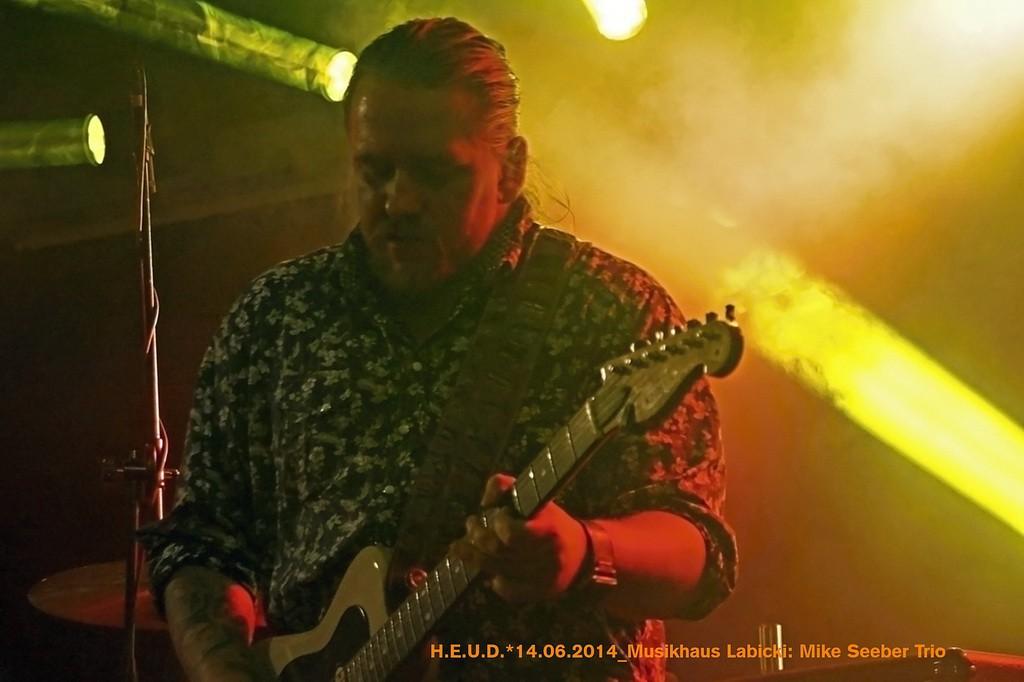 Mike-Seeber-Trio-2014_14