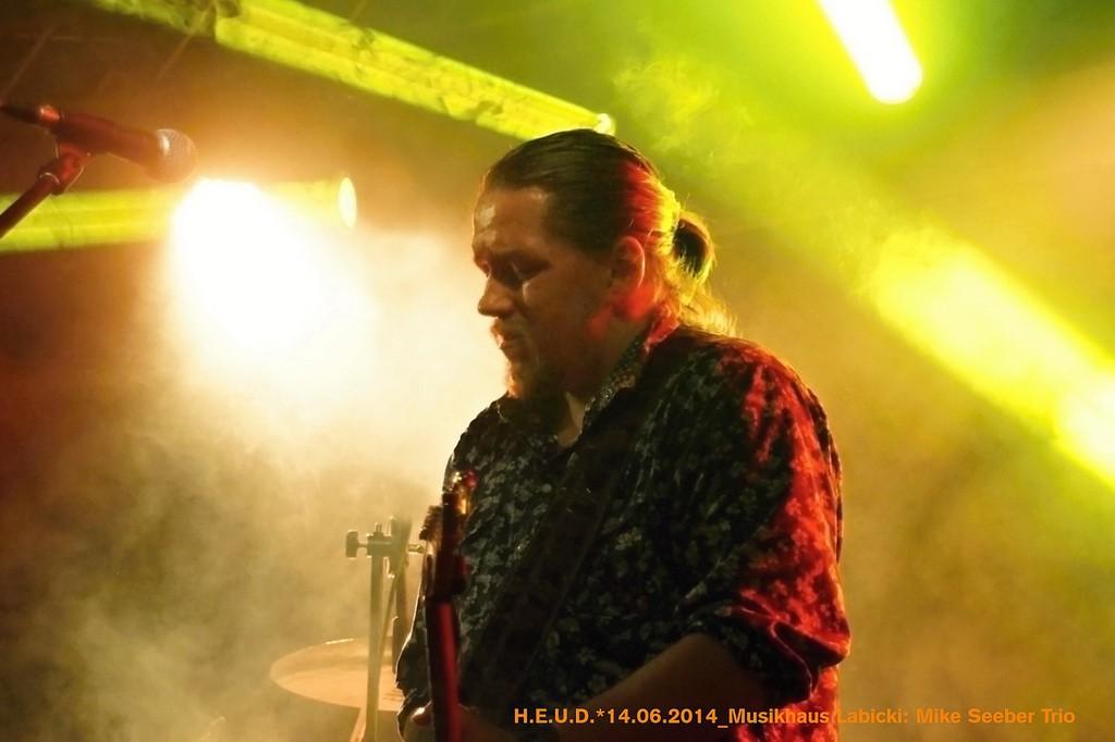 Mike-Seeber-Trio-2014_15