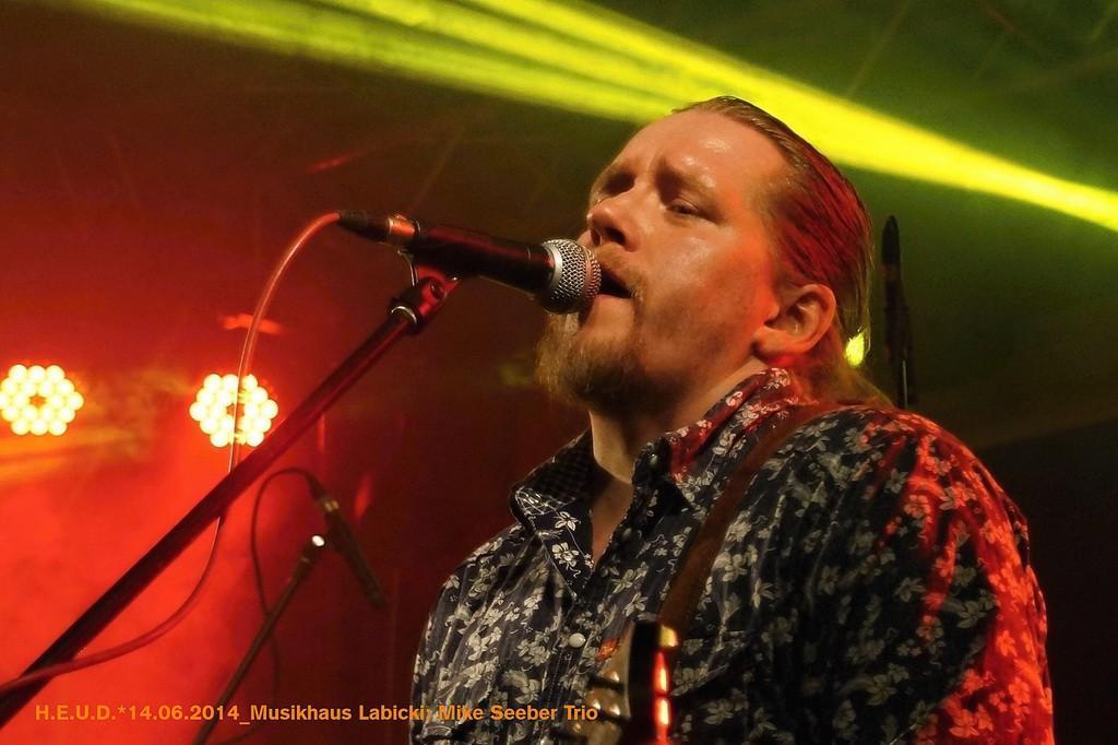 Mike-Seeber-Trio-2014_19