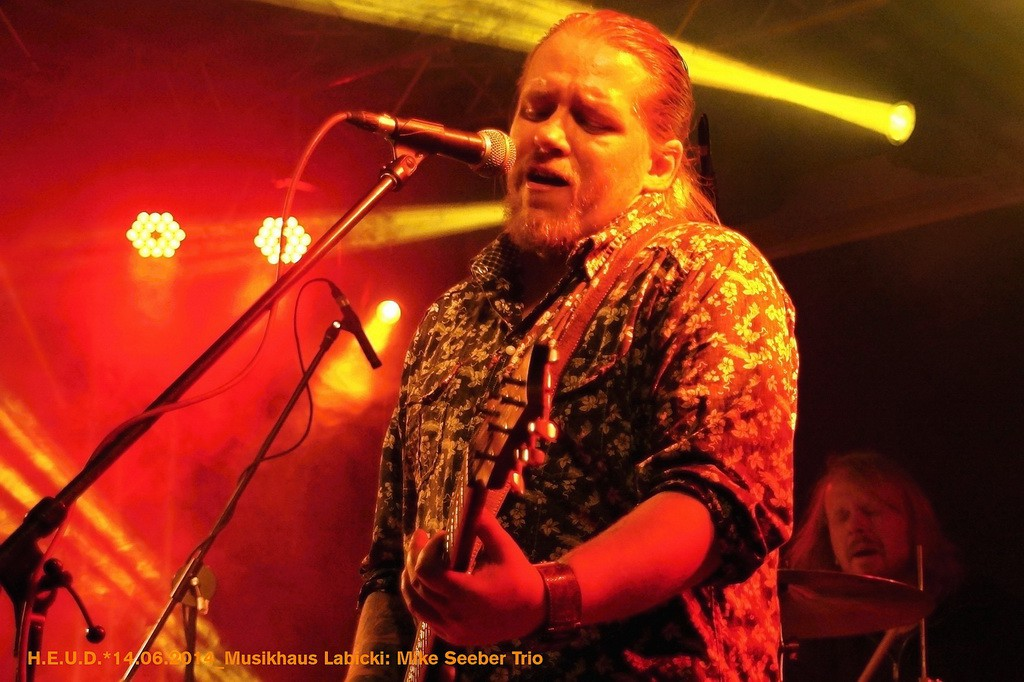 Mike-Seeber-Trio-2014_20